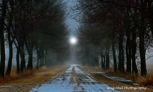 burning-thru-the-fog-Courtesy of Greg Abel Photography