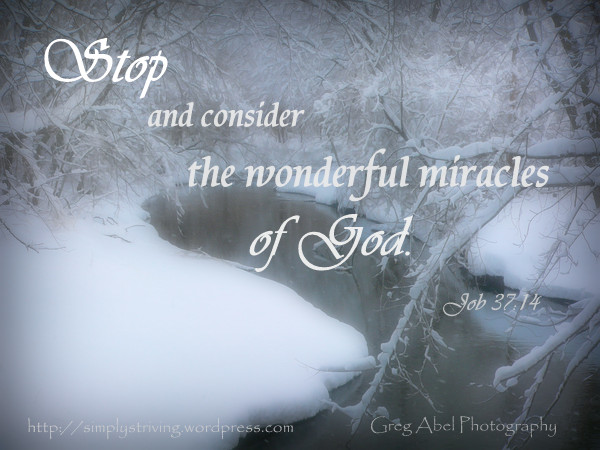 Stop and Consider God's miracles