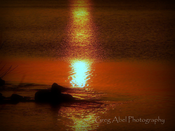golden-reflections-M